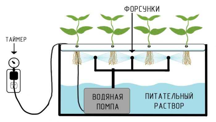 Гидропоника капельный метод курить траву через сухой