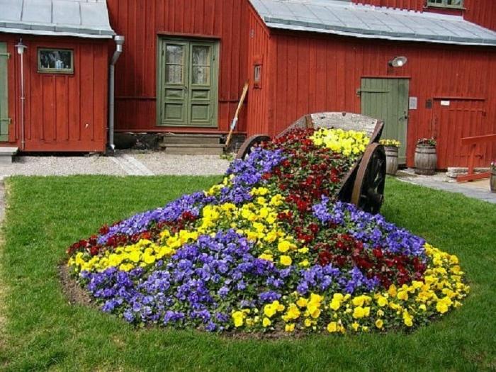 красивые клумбы и цветники на даче своими руками фото и видео