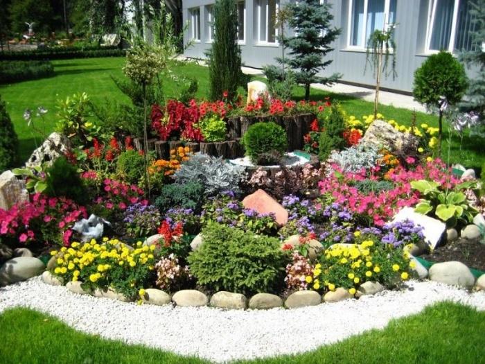 Лучшие цветы для альпийских горок