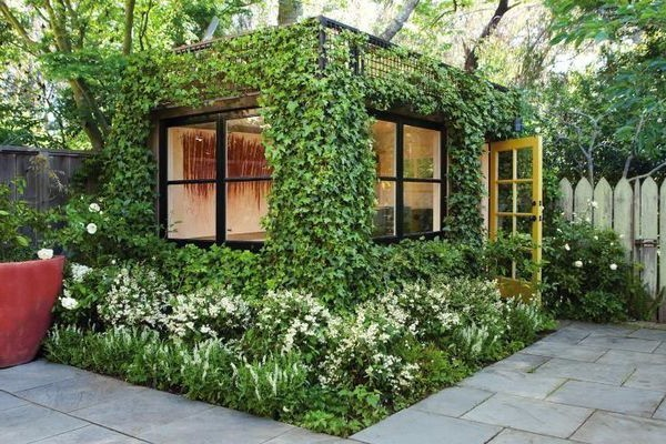 Вертикальное озеленение на даче своими руками фото фото 213