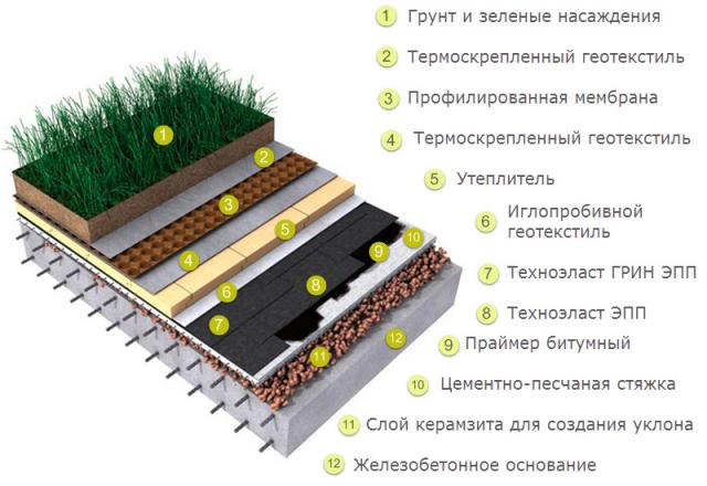 Зеленая кровля: способы озеленения, как сделать своими руками