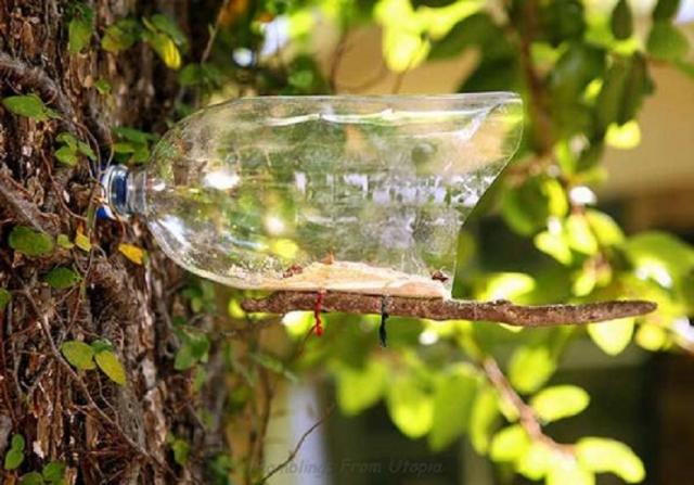 Как сделать кормушки для птиц из бутылки: 1, 2, 5-литровой, фото