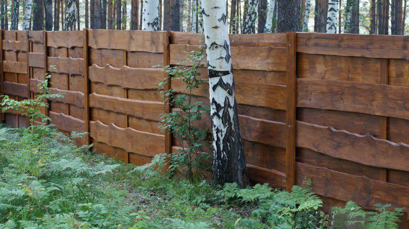 Забор из необрезных досок своими руками фото