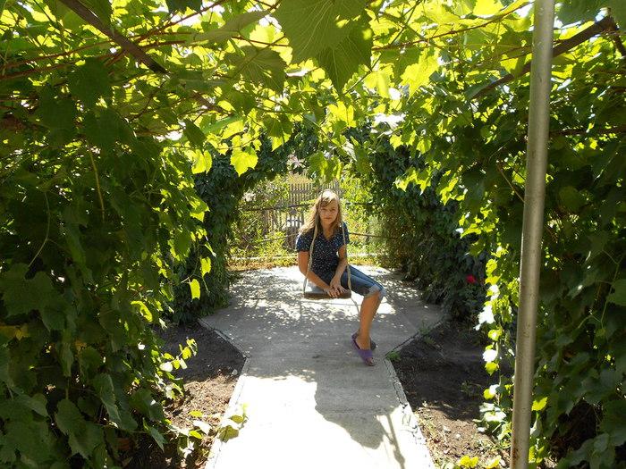 Беседка для винограда своими руками