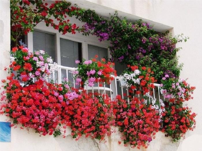 Цветы на балконе дизайн фото