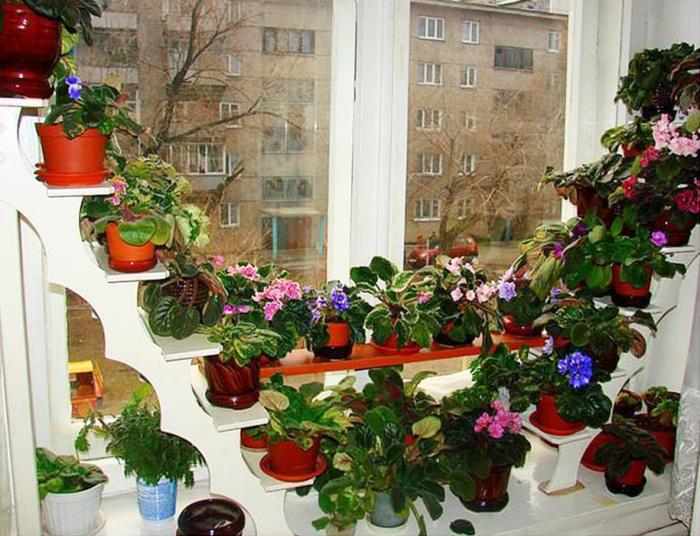 Как сделать полку для цветов на балконе