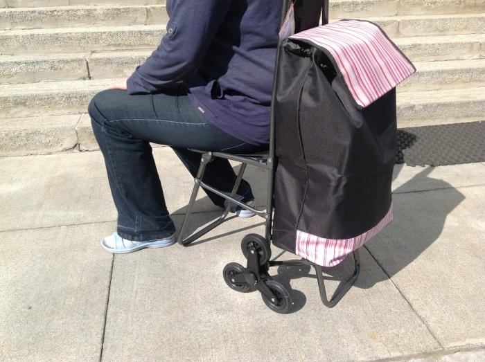 Хозяйственные сумки на колесах andersen рюкзаки нова тур 130-140 л