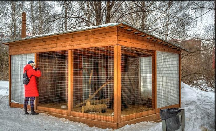 Как построить вольер для птицы своими руками 49