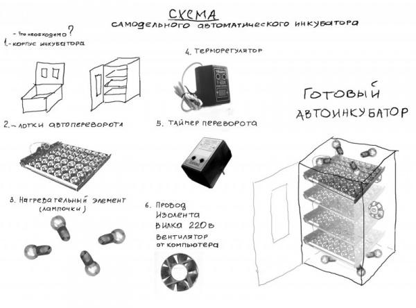 Скачать видео как сделать инкубатор своими руками