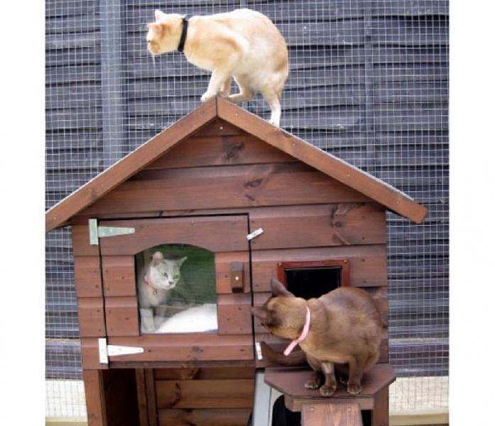 Тёплый дом для кошки своими руками 63
