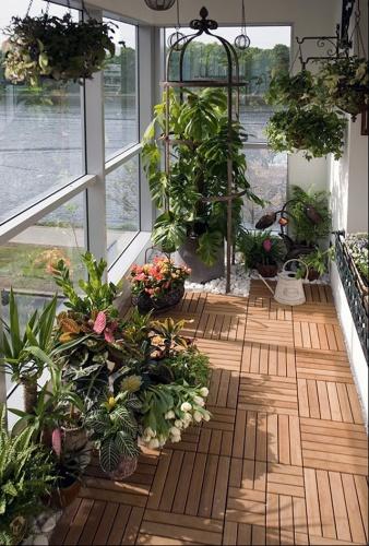 фото зимний сад на балконе