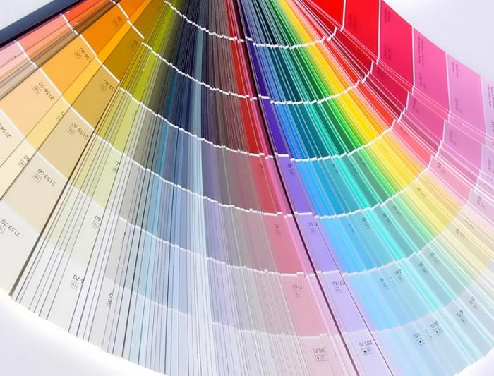 Покраска стен водоэмульсионной краской своими руками