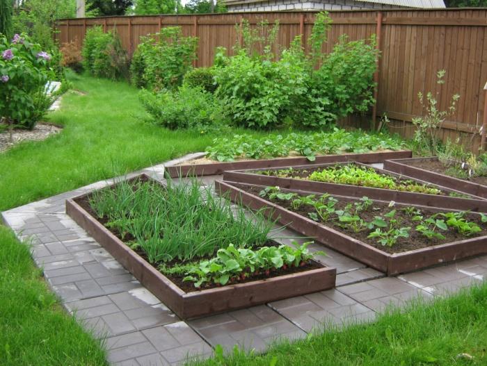 Дизайны огородов