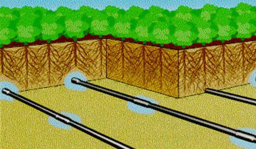 Системы полива на даче