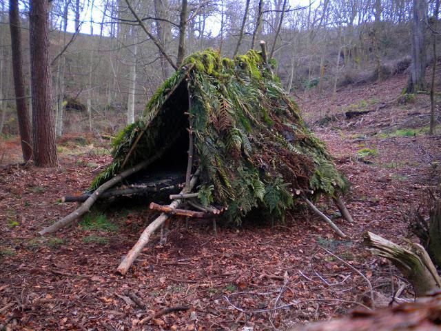 Построить шалаш в лесу своими руками