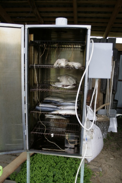 Коптильный шкаф для горячего копчения своими руками 54