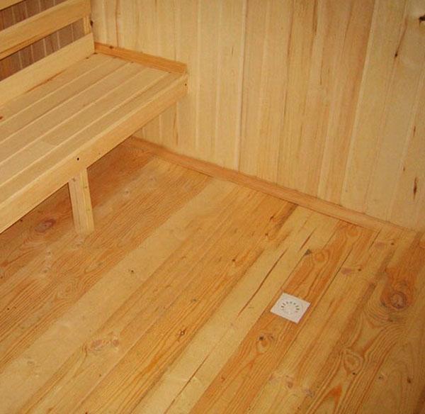 Фото дендробиумом в домашних условиях 40