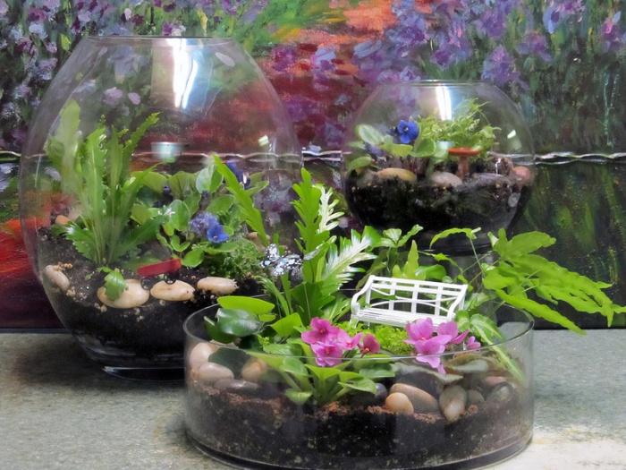 Флорариум из аквариума своими руками 798