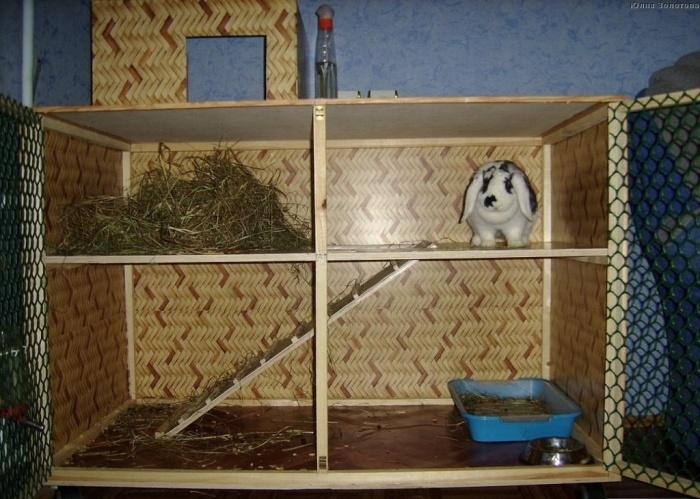 Клетка декоративному кролику своими руками