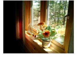 установка деревянного окна со стеклопакетом