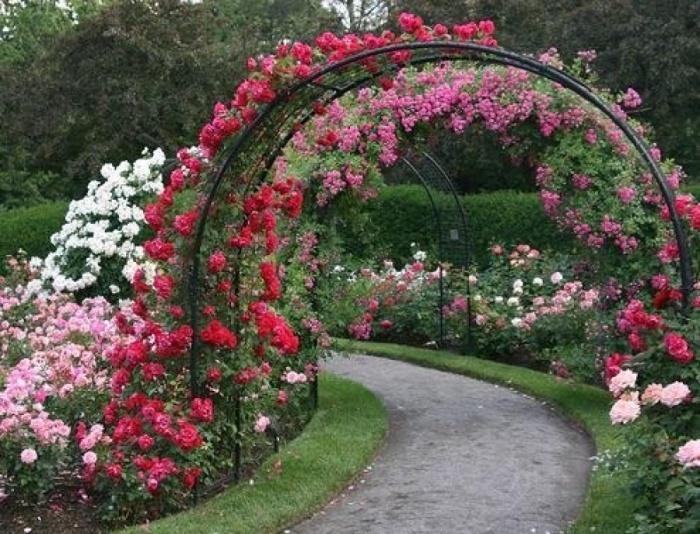 Арка фото для цветов