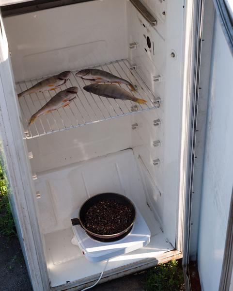 Коптилка из холодильника 4