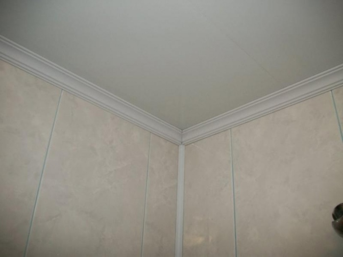Монтаж ПВХ панелей на потолок и плинтуса: видео-инструкция 243