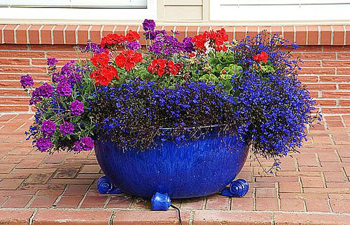 Цветы для уличных вазонов на даче: выбор и посадка фото идеи