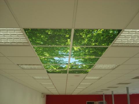 Потолочные панели из пластика (ПВХ), пенопласта, светодиодные