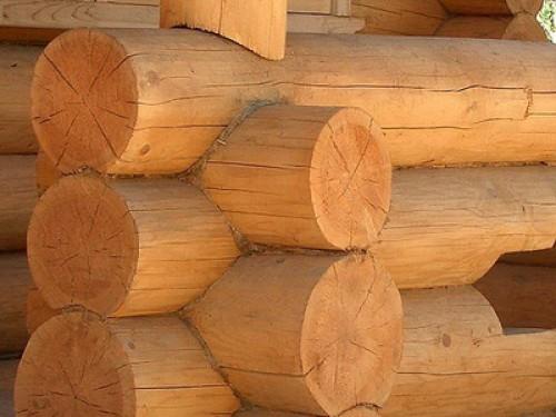 баня из дерева